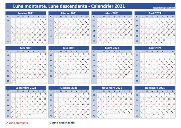 Calendrier Lune Montant Et Descendante 2022 Lune montante 🌙   Lune descendante : Calendrier lunaire 2021
