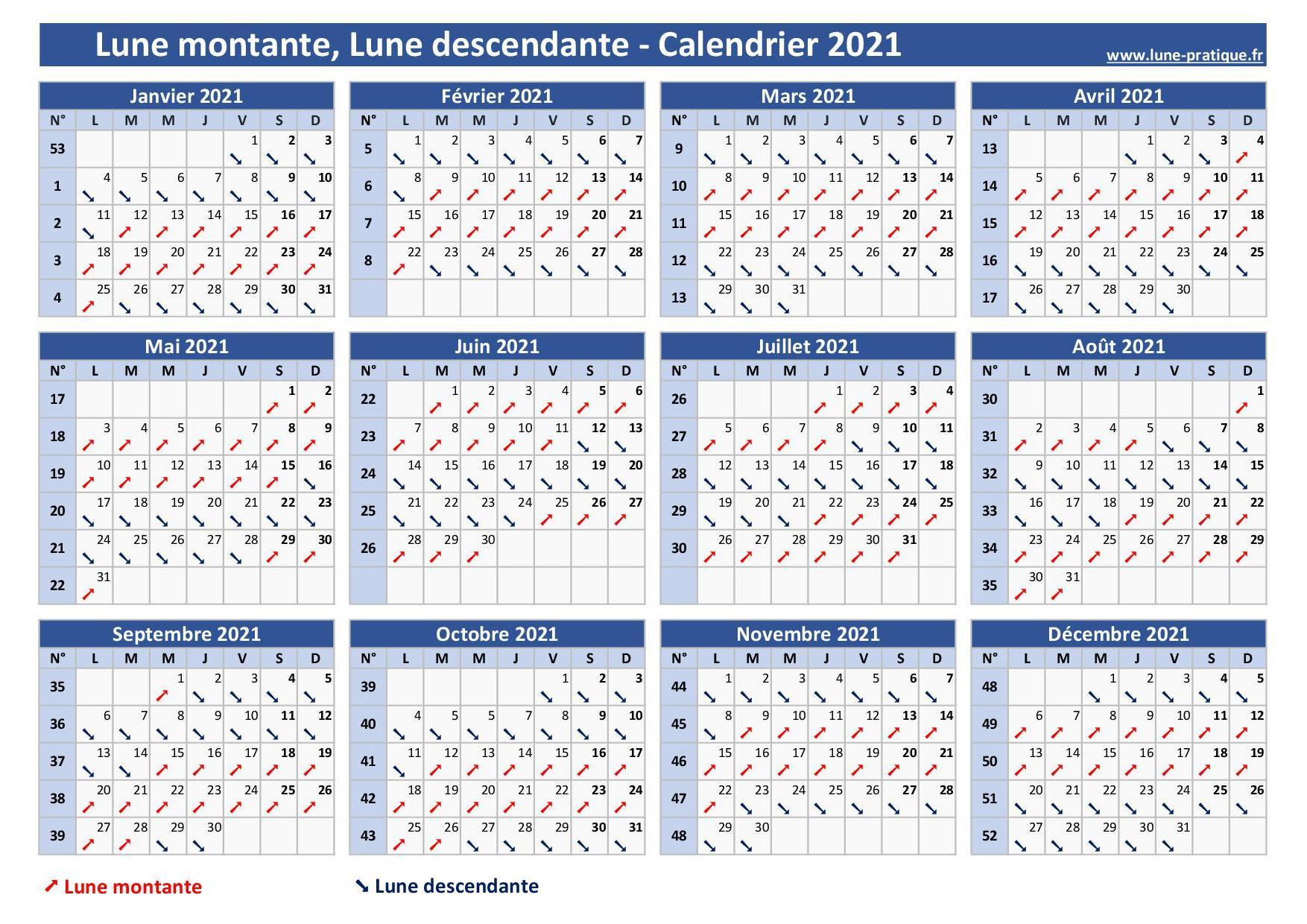Calendrier Lunaire Jardin Mars 2022 Lune montante 🌙   Lune descendante : Calendrier lunaire 2021